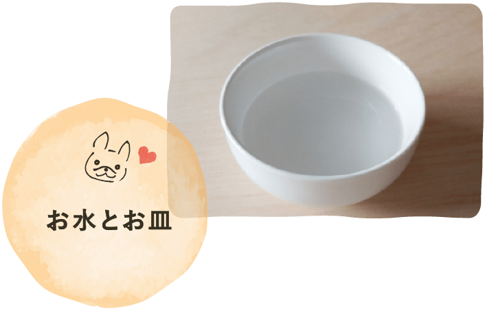 お水とお皿